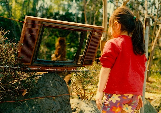 Lost TV.jpeg